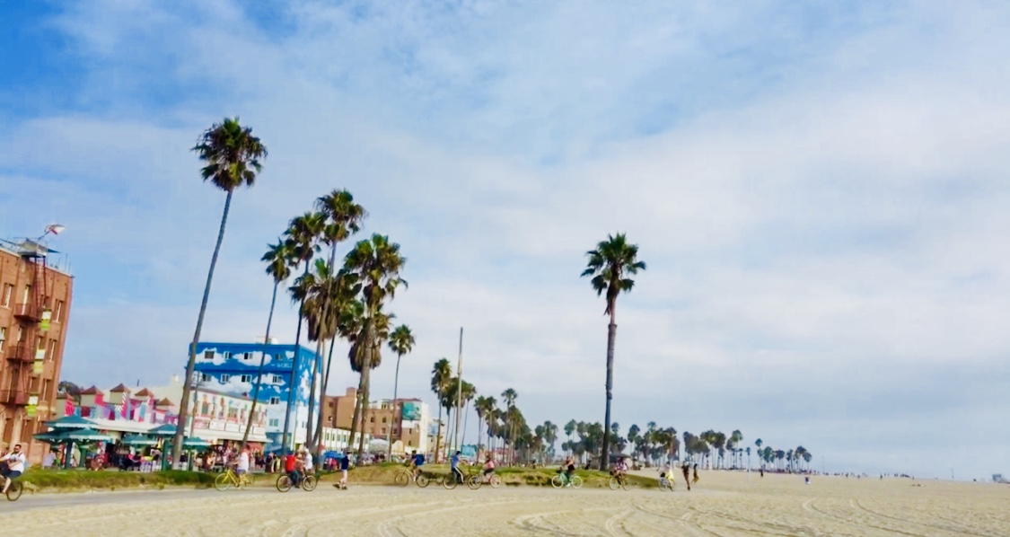 L.Aのビーチといえばここ!!ベニスビーチに行ってきた【場所・行き方・観光スポット】